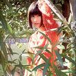 ハピネスエロ速報 【女優画像】あまちゃん出演の橋本愛ちゃんがこんなにも超絶美少女なのに引きこもりがち