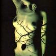 【八木 さおり】 (八木小緒里)ヌード画像♪ ヌード画像アイブログ 芸能女優アイドル