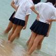 エロねた: 女子高生の透けブラ画像集